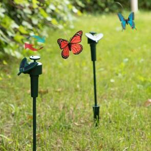 Farfalla Solare Fluttering