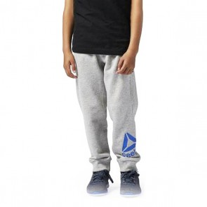 Pantalone Sportivo per Bambini Reebok B ES BL Pant Grigio Azzurro