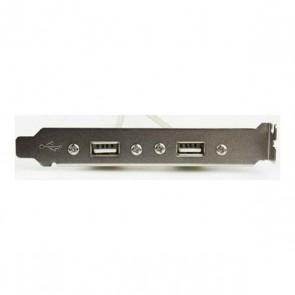 Cavo Pannello Posteriore 2 x USB iggual IGG311691 2.0 0,25 m