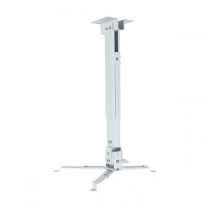 Supporto da Soffitto Inclinabile e Girevole per Proiettore iggual STP01-S IGG314692 -22,5 - 22,5° -15 - 15° Ferro Bianco