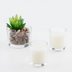 Candele Profumate e Cactus Decorativo Oh My Home (pacco da 3)